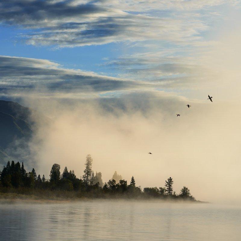 Утро, само-собой, туманное...photo preview