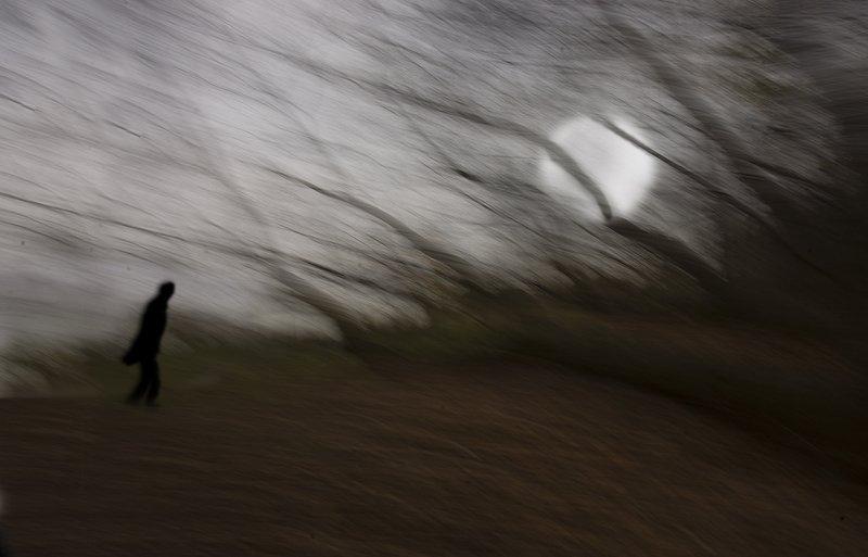 Одинокая прогулкаphoto preview