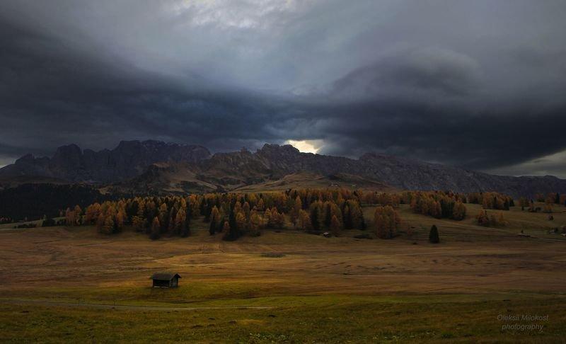 Надвигается штормphoto preview