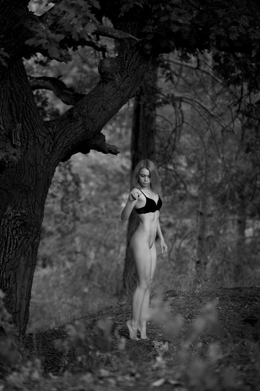 konstantin skomorokh константин скоморох kiev киев severodonetsk северодонецк ню art nude fine art ukraine Wood nymph. Part 2.photo preview