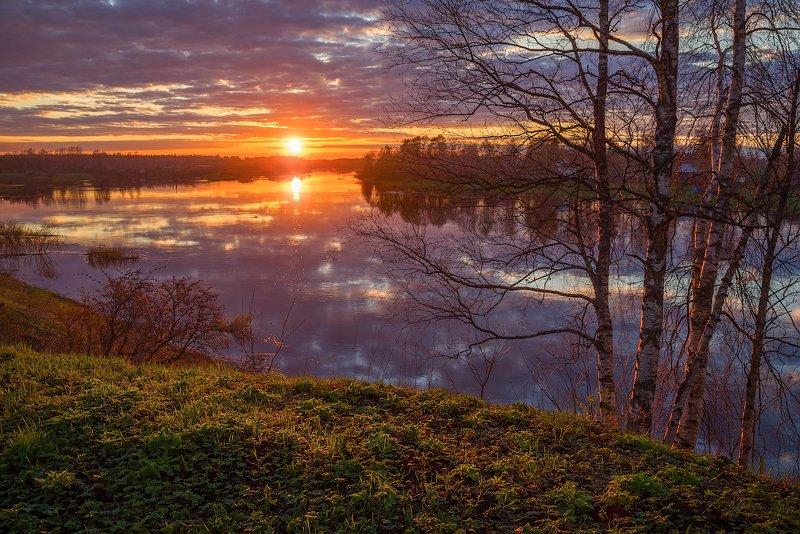 весна, солнце, берег, молога, устюжна, закат, облака, река, березы Яркая веснаphoto preview