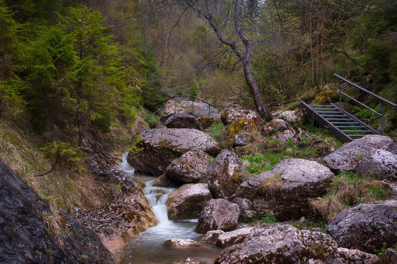 nature, waterfall, homole, pieniny, bridge, trees, landscape, poland Wąwóz Homolephoto preview