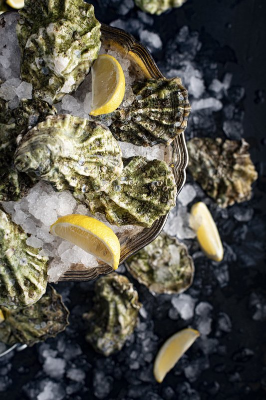 food photography fresh oysters seafood raw foodie still life flatlay Oystersphoto preview