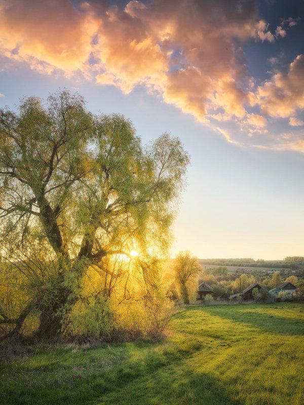 весна, закат, май Весенний светphoto preview