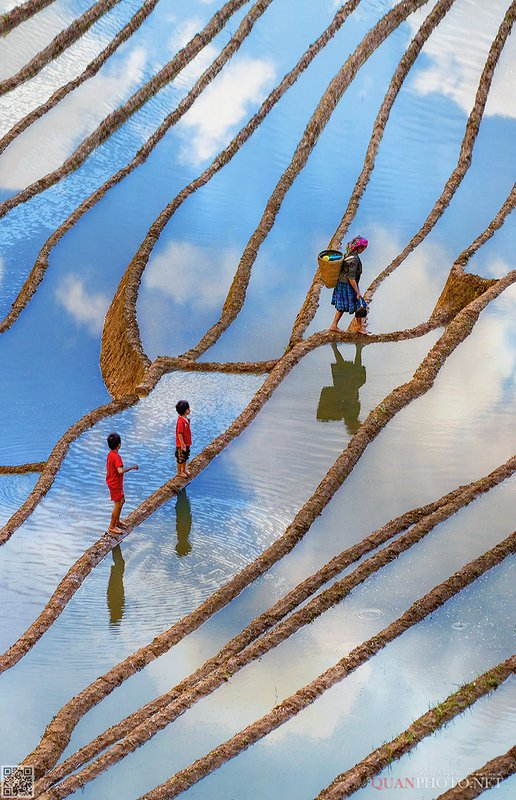 quanphoto, landscape, terrace, fields, reflections, farmland, agriculture, culture, highland, ethnic, people, vietnam Walking in the Sky фото превью