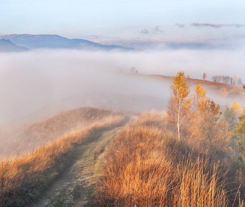 закарпатье, осень, рассвет, горы Закарпатьеphoto preview