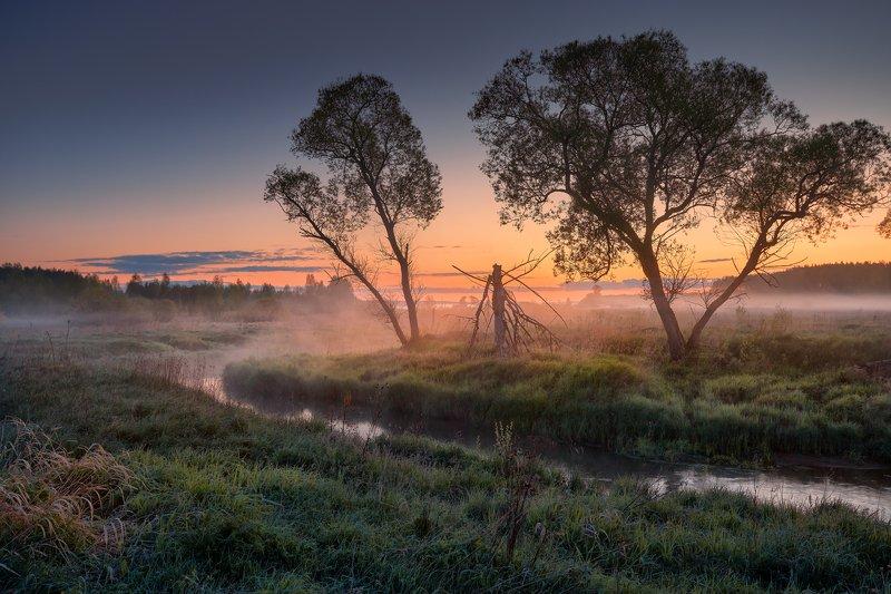 Свет наступающего утра ...photo preview