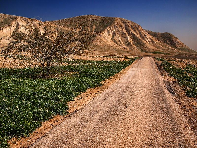 Samaria-Shomron,Israelphoto preview