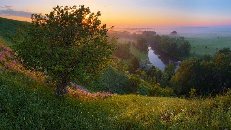 утро, рассвет, весна, пейзаж, вид, туман, река, псёл, дерево, цветы, свет, панорама, light, spring, morning, view, panorama, river, psel, ukraine, sunrise, colors, flowers, grass, hills, tree, fog, misty, foggy Утренний свет ..photo preview