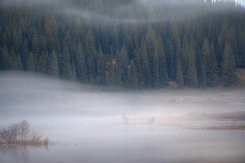 кусья, река, пруд, урал, пермь, утро, туман, весна, май Волныphoto preview