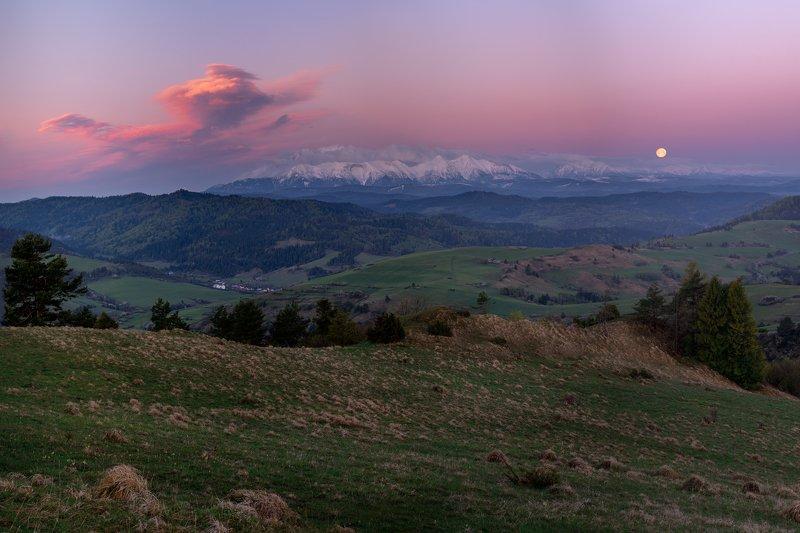 tatry, tatras, poland, polska, nature, landscape, mountains, sunrise light, trees, Tatryphoto preview