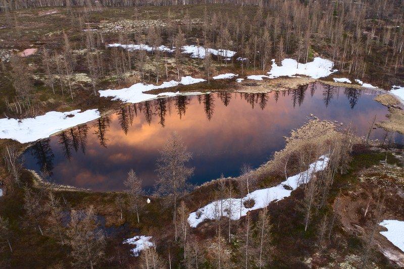 озеро, север, арктика, весна, отражение Лесное озероphoto preview