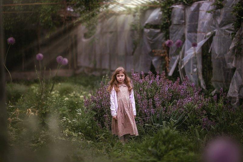 детство ребенок оранжерея заброшенность свет девочка трава цветы сиреневый лук В старой оранжерее.photo preview