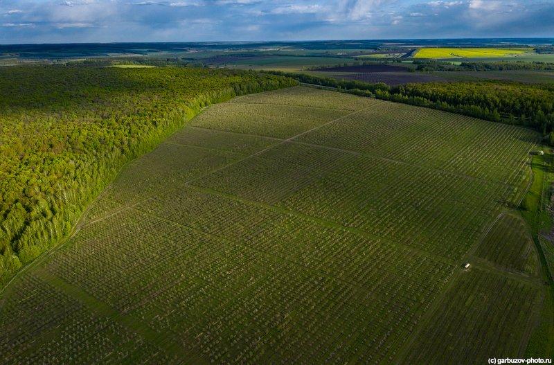 Тульская Моравия.photo preview