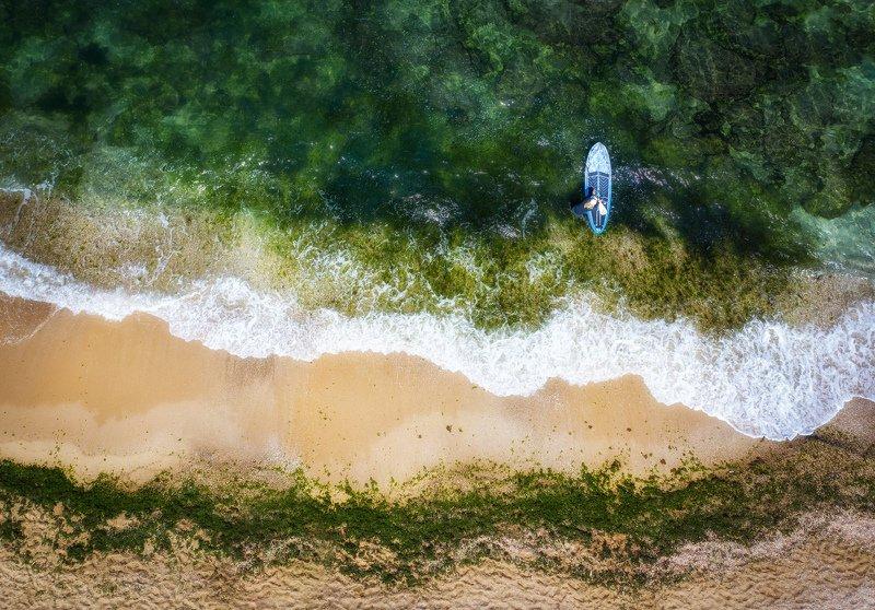 Surfing Startphoto preview