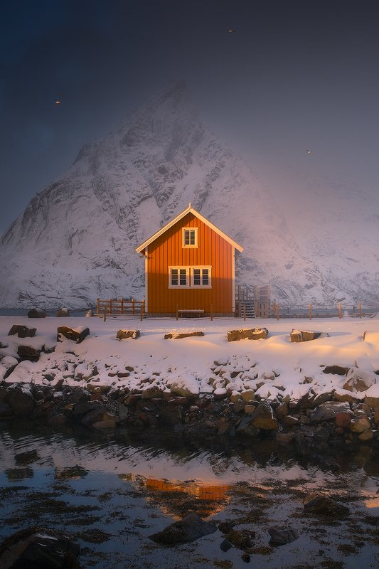 sakrisoy lofoten norway winter house birds storm light sun mountain  sakrisoyphoto preview