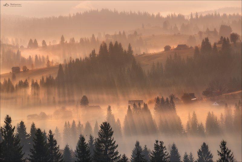 Карпаты, Закарпатье, осень в Карпатах, осень,утро, туман, горы Магия рассвета ..photo preview