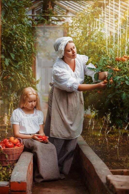 Cбор урожаяphoto preview