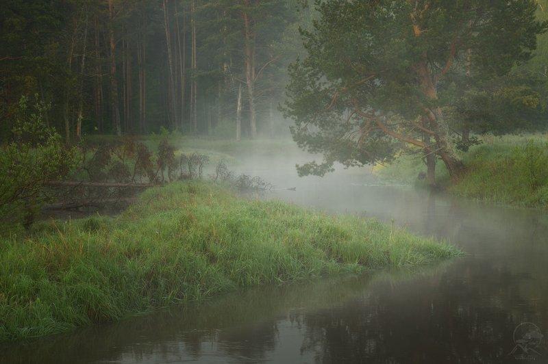 пейзаж, природа, река, туман, весна \