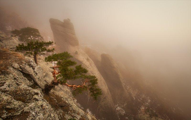 Шаман в Долине Привидений.photo preview