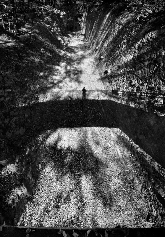 Автопортрет в теняхphoto preview