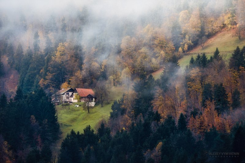 slovenia, fog, autumn, november, trees, yellow, house, outdoor, landscape, slovenian A place to hidephoto preview