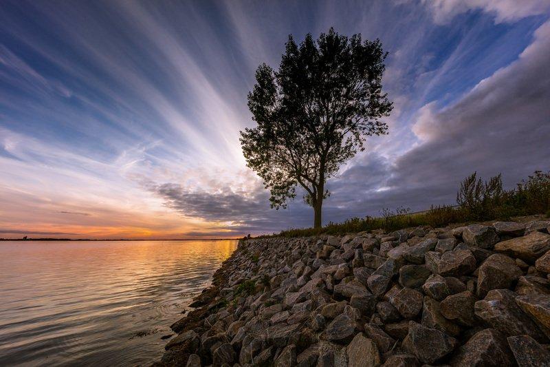 закат, дерево, облака, небо, мост, камни, Небесные игры у одинокого дереваphoto preview