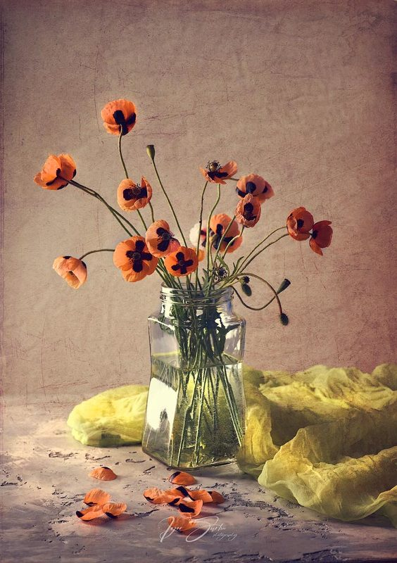 Poppies artphoto preview