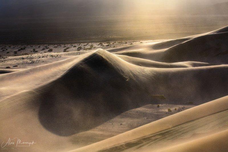Пустыня, дюны, песок, свет, тень, абстракция, паттерн, узор, фото-тур, США, Америка,  Буря в Пустынеphoto preview