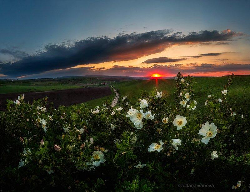 закат, горы, поле, ессентуки, лето, ставропольский край, предгорный район, кмв Вдыхая аромат весны...photo preview