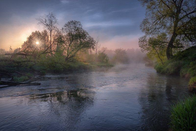 истра, река, пейзаж, рассвет, небо, дерево, трава, туман, утро Майская зелень фото превью