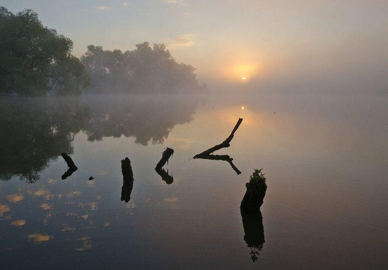 пейзаж, природа, утро, рассвет, восход, пруд, большие байдики Красивое началоphoto preview
