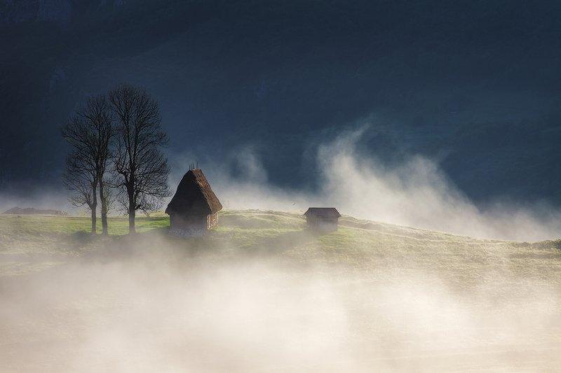 summer, trees, fog, landscape, travel, nature, mountain, romania, cold, sunrise, morning, house, light Morning Lightsphoto preview