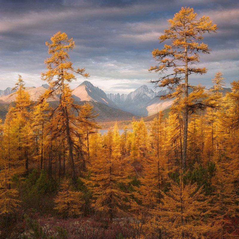осень, колыма, озеро, горы Золото Колымыphoto preview