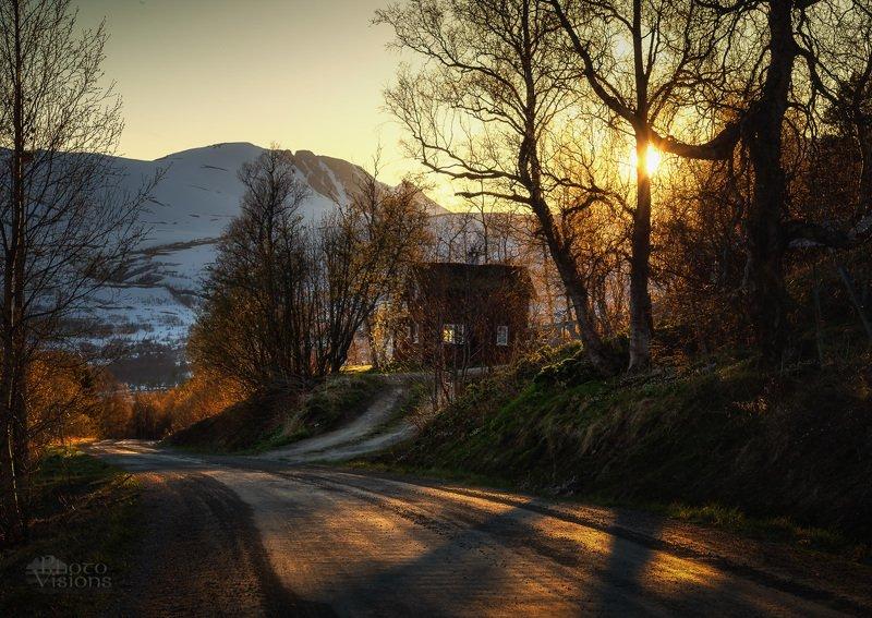 norway,norwegian,scandinavia,cabin,house,cottage,wooden,trollheimen,mountain,mountains,sunset Mountain cottagephoto preview