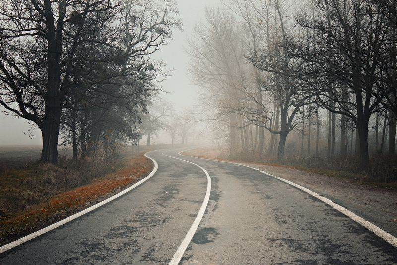 slovakia, foggy, roads, country, mycountry, photography, artphotography Country roadsphoto preview