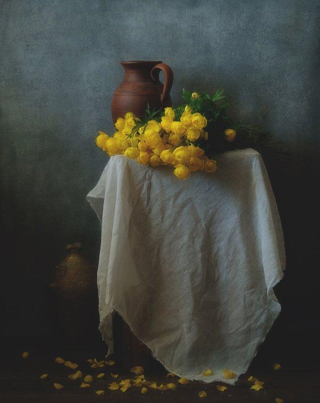 натюрморт,цветы,весна,купальница европейская купальницы... фото превью