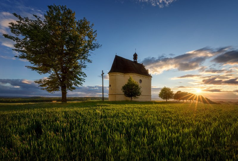 landscape, tree, sunset, panorama Sunset at The Chaple (Úsov)photo preview