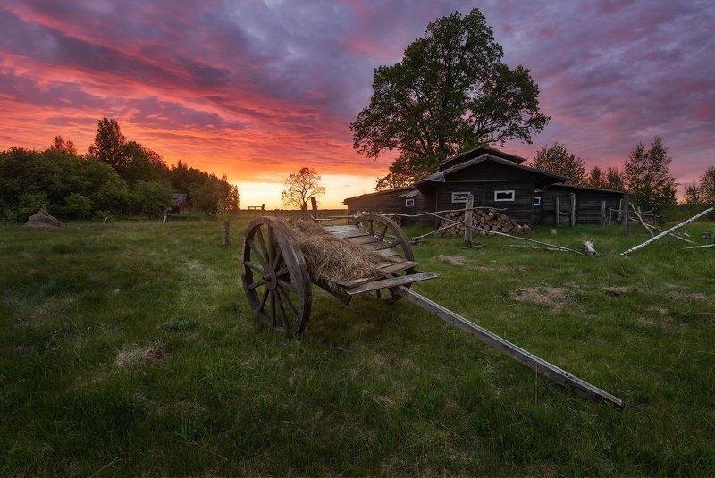 Россия, Псков, фототур Летний закат в деревне....photo preview