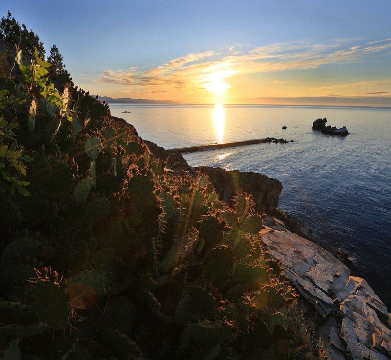 крым, алушта, утес, утес карасан, мыс плака, мыс, кактус, черное море, волна, пляж, пейзажи крыма Утес Карасанphoto preview