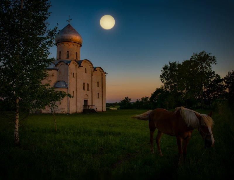 Июньская ночь у Спаса  на Нередице. фото превью