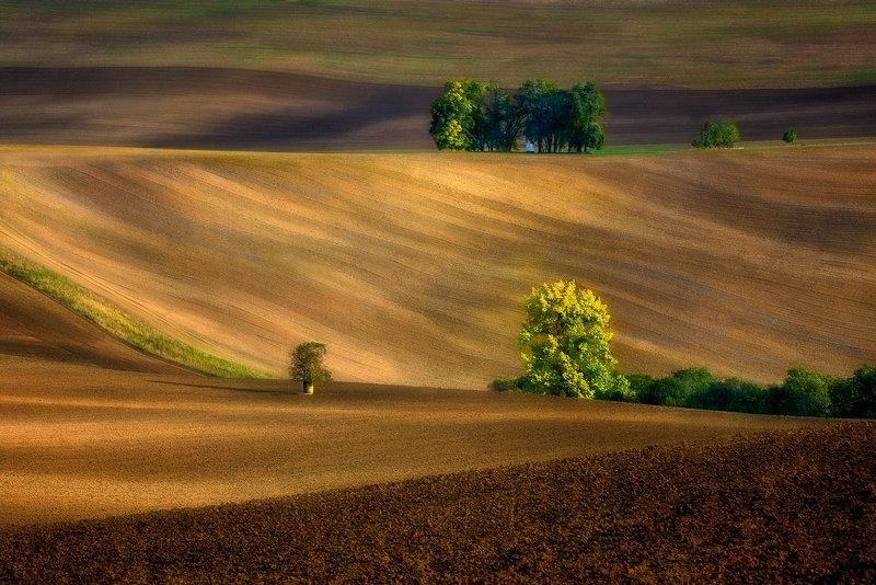 autumn,   landscape Moravian fieldsphoto preview