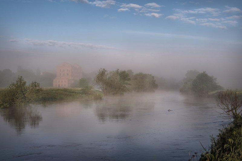 протва, река, наводнение, утро, туман, мельница Протва после дождей фото превью
