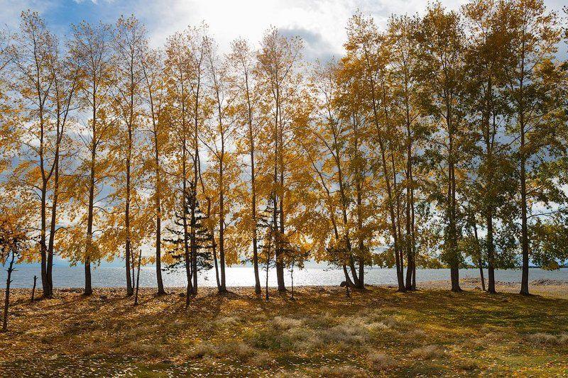 байкал Северный Байкалphoto preview
