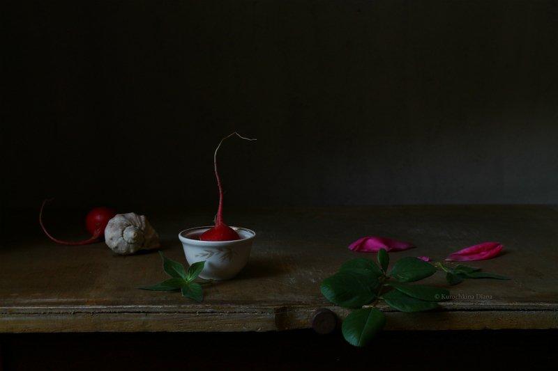 натюрморт, редис, розовый Редисphoto preview