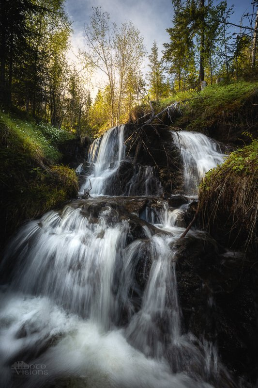 norway,norwegian,waterfall,falls,stream,forest,woods,woodland,trees,tree,spring, Springtime streamphoto preview