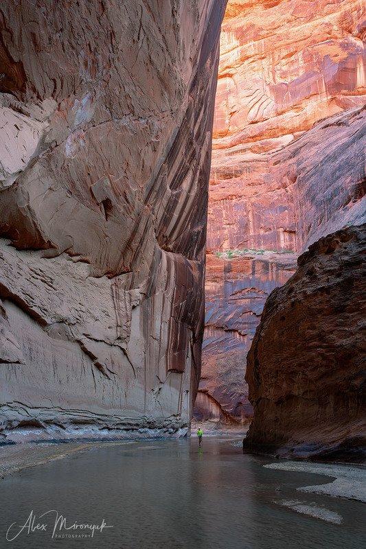 США, Аризона, Юта, каньон, щелевой, слот, пустыня, река, скала, отражение,  Небоскребы, небоскребы, а я маленький такой....photo preview
