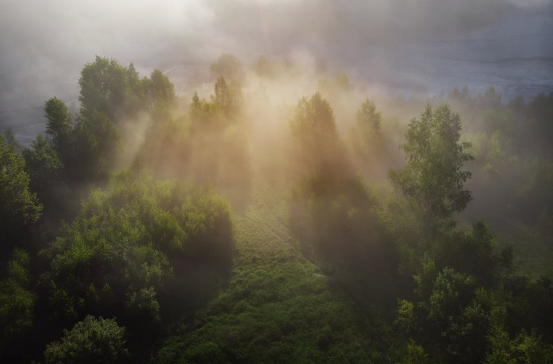 summer, trees, fog, green, sunrise, travel, nature, light, romania, morning, landscape Light Explosionphoto preview