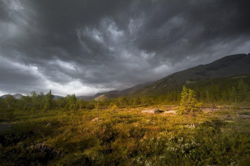 хибины, горы, дождь photo preview