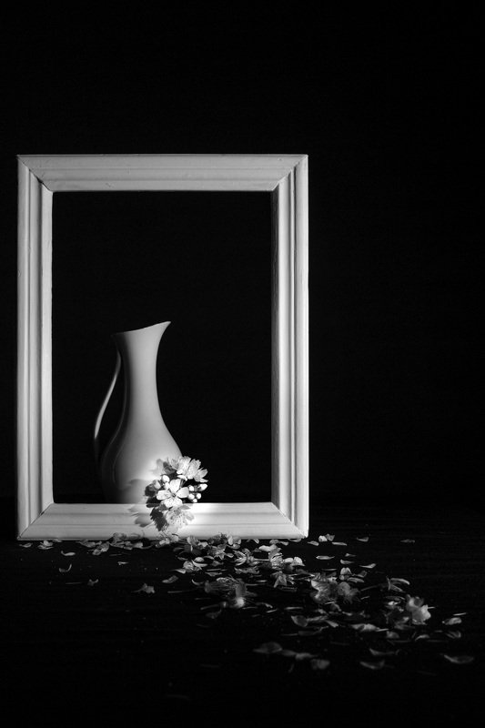 Still life in Black and Whitephoto preview